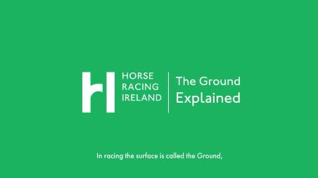 Motion Graphics - Explainer Videos - Horse Racing Ireland